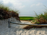 path to cape cod bay by solita17, Photography->Shorelines gallery