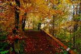 Autumn by biffobear, photography->landscape gallery