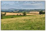 3 Sheep by slybri, Photography->Landscape gallery
