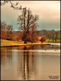 By the Lake Shore by Dunstickin, photography->shorelines gallery