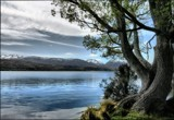 Lake Alexandrina View by LynEve, photography->landscape gallery