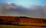 Shorn2 by biffobear, Photography->Landscape gallery
