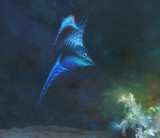 Fish by rvdb, abstract->fractal gallery