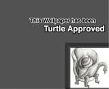 Rose turtle by LostinNarnia, illustrations gallery