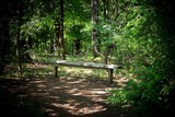Seat for Owd Bob by kidder, Photography->Landscape gallery