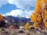 Mount Princeton and Cottonwood Trees by fotobob, Photography->Mountains gallery