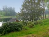 Misty Morning Cragside by biffobear, photography->landscape gallery