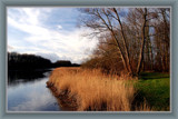 Zeeland Countryside (06), Bending Creek by corngrowth, photography->landscape gallery