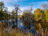 Early Fall by Pistos, photography->water gallery