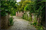 Cobblestone Alley 5 by corngrowth, photography->architecture gallery