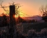 Winter's Golden Glow... by Photo2runner
