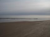 Windswept Beach by Sam172, Photography->Landscape gallery