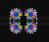 Psychedelic Floret by ccmerino, Photography->Manipulation gallery