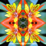 Kolydoskope (square) 2 by Samatar, Photography->Manipulation gallery