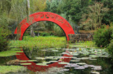 Bellingrath Gardens by allisontaylor, photography->gardens gallery