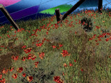 Poppy Overdose by Flmngseabass, abstract gallery