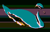 The Coolest Swan by edoctober, abstract gallery