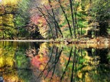 Fall's Reflection by zippee, photography->shorelines gallery