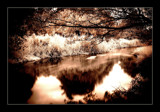 more infra river by JQ, Photography->Landscape gallery