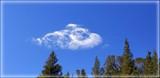 Cloud Nine....or Cloud Submersible. by Flmngseabass, photography->skies gallery