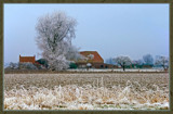 Winter In Zeeland 2009 (19) by corngrowth, Photography->Landscape gallery