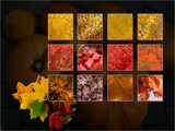 celebrate fall # 1 by kodo34, contests->Fall Festivities gallery
