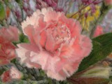 The Painting by mimi, photography->flowers gallery