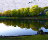 A Pond in CT by ccmerino, Photography->Shorelines gallery