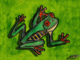 Frog-likes-Green by Nauxilium, Contests->Draw a Frog gallery