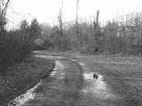 The Road To Home by SamanthaHoran, contests->b/w challenge gallery