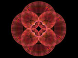Poppy Plaids by razorjack51, Abstract->Fractal gallery