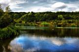 Idyllic by biffobear, photography->water gallery