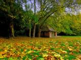 The Pavilion by biffobear, photography->landscape gallery