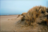 Empty Beach In Wintertime by corngrowth, photography->shorelines gallery