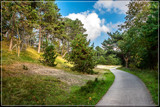 Lower Sand Dunes Hike by corngrowth, photography->landscape gallery