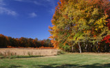 More Autumn by jerseygurl, photography->landscape gallery