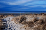 magic path by solita17, Photography->Shorelines gallery