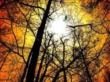 nova by Otaku, Photography->Skies gallery