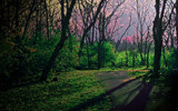 Moonlight In Nightfall by casechaser, Photography->Manipulation gallery