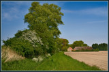 Rural Spring by corngrowth, Photography->Landscape gallery