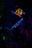 Glow in the Dark Butterflies by Pistos, photography->sculpture gallery