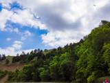 Niobrara River Trip (2) by Pistos, photography->nature gallery