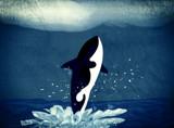 Splash by bfrank, illustrations gallery
