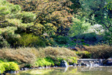 Park Scene by Ramad, photography->gardens gallery