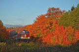 Fall Colours In Northern Ontario #2 by icedancer, photography->trains/trams gallery