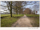 come walk with me... by fogz, Photography->Landscape gallery