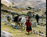 Peru: alt. 3900 m by ppigeon, photography->people gallery