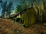 Shed In woods..... by biffobear, photography->nature gallery