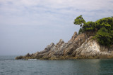 A Tree on the Rocks by jeenie11, photography->shorelines gallery