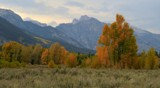 Fall And The Tetons by Zava, photography->landscape gallery